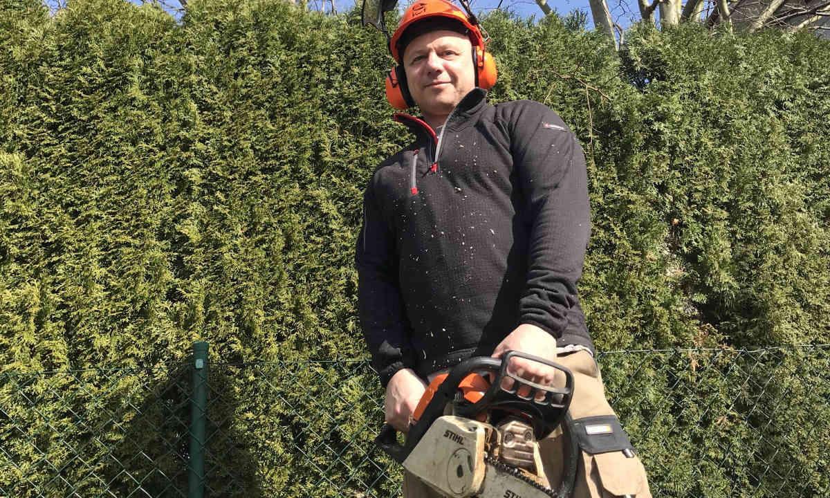 Baumfällen Mirko Wagner bei der Arbeit der Baumfällung in Nürnberg
